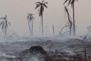 Desastres-ambientales-producidos-por-el-cambio-climatico-2
